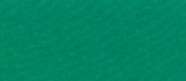 Lycra® glänzend Irish Green L 454